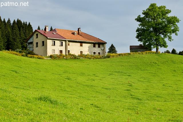 La maison et l'arbre - bellecombe - jura