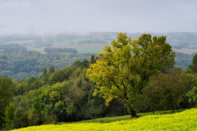Picture of autumn in the french rural landscape