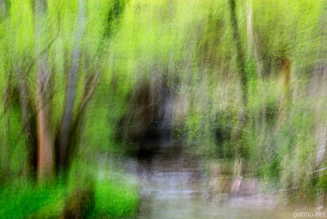 Paysage abstrait des sous bois le long de la rivière du fornant