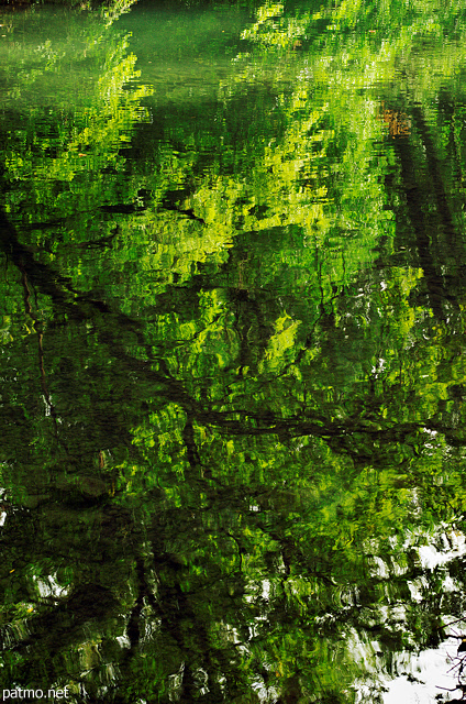Photograph of trees reflected on the water of river Thiou in Annecy