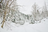 Photograph of a snowy winter landscape in Valserine valley