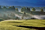 Photo with mist and sun on the rural landscape of Bellecombe plateau in french Jura