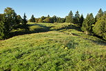 Image of the green meadows of Bellecombe plateau in french Jura
