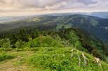 French jura landscape seen from Cret de Chalam mountain
