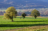 Image of a green countryside in autumn, France, Savoie department