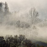 Photograph of a misty autumn morning in the french countryside