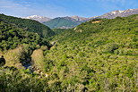 Photograph of a landscape in North Corsica with mountains and forest