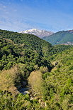 Photo of Abatesco valley in North Corsica