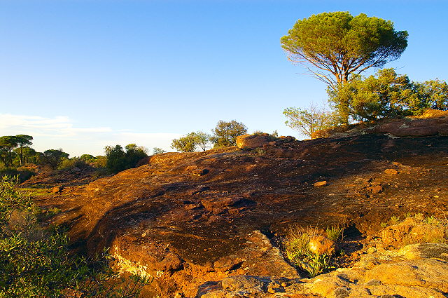 Photograph of La Plaine des Maures in sunset light