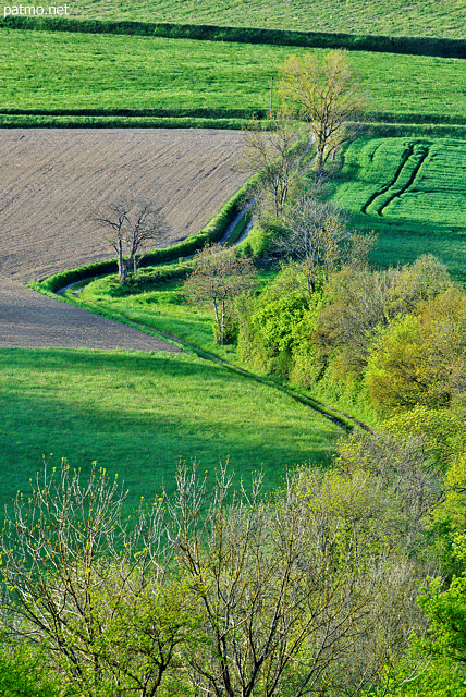 Photograph of the french countryside with green springtime colors