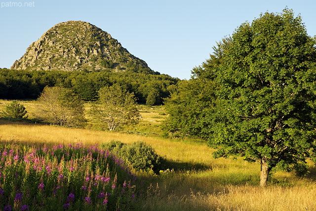 photographies patrick morand paysage d 39 t dans la montagne ard choise autour du mont gerbier. Black Bedroom Furniture Sets. Home Design Ideas