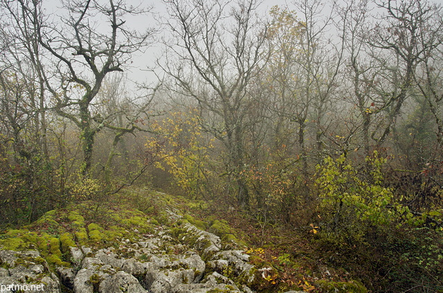 Image of the autumn mist on the lapies in Chaumont - Haute Savoie