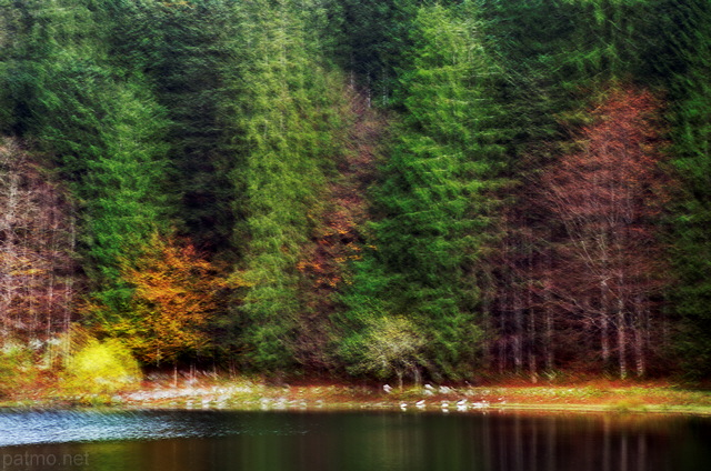 Abstract image of the autumn forest around lake Genin