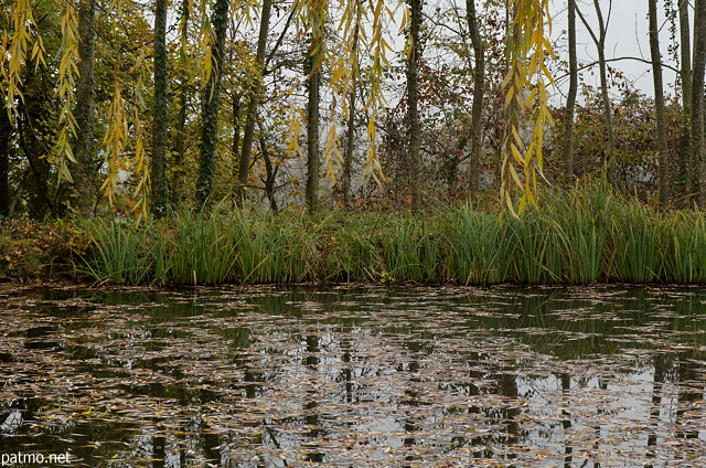 Images of the autumn colors around the pond in Chaumont - Haute Savoie