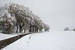 Image of a country road crossing a rural landscape with snow and fog