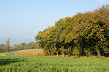 Photograph of a french countryside landscape by a sunny autumn morning