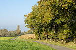 Photograph of a little country road through the french rural landscape
