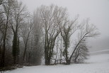 Photograph of the french countryside in winter with snow and fog