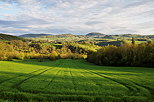 Picture of a green french countryside under the sun and clouds