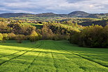 Image of light and shadow on the green french countryside