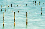 Picture of wood poles in the blue water of Annecy lake