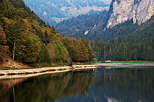 Picture of the autumn colors in the french Alps around the lake in Montriond